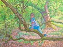 'Boy in Tree'(2012) 60x80cm oil on canvas
